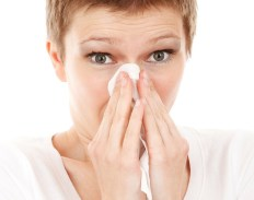 allergies saisonnière image 5